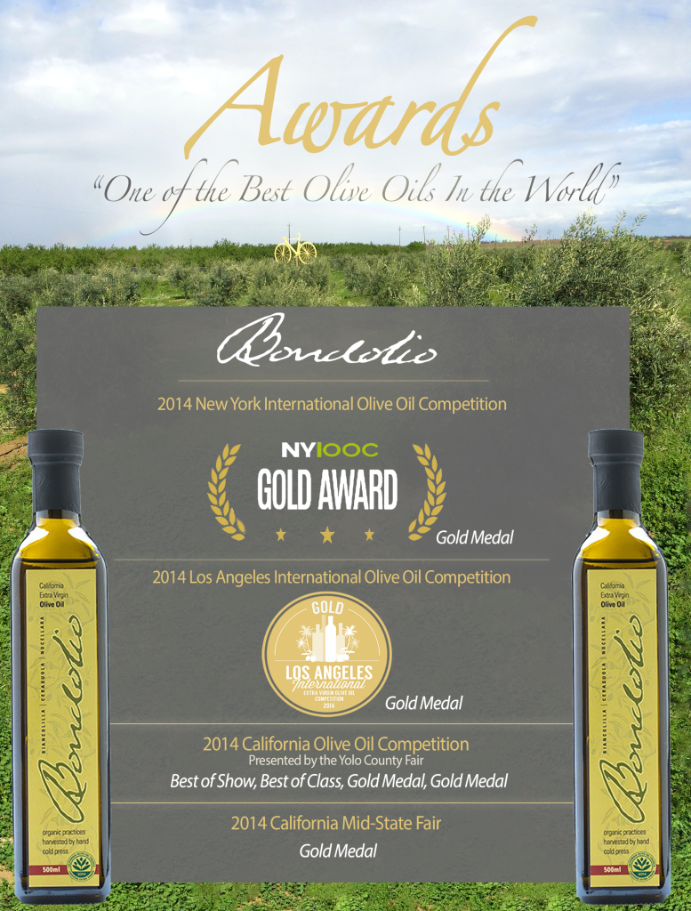Bondolio Awards PAge