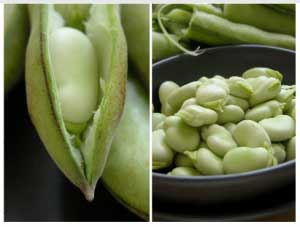Fava Bean & Artichoke Soup
